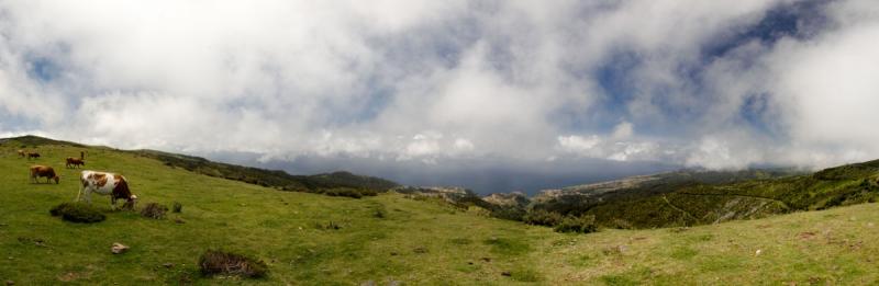 2015-05-06 Panorama 4.jpg